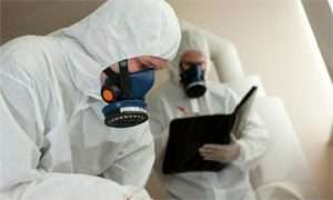 los-angeles-mold-remediation-expert