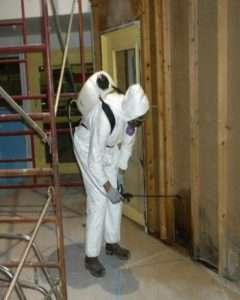 Mold-Treatment-Company-Los-Angeles